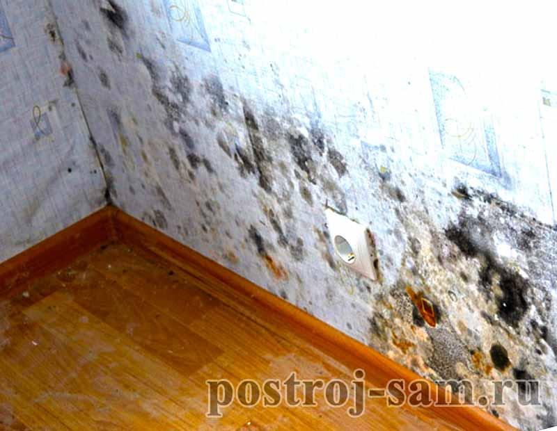 Что делать если промерзает стена в панельном доме - построй .